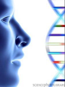 DNA molecule and face